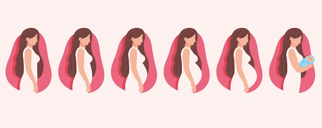 Concetto di illustrazione di fasi di gravidanza