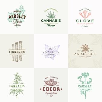 Segni di erbe e spezie di alta qualità o modello di logo