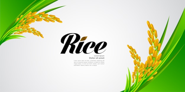 Premium rice design di grande qualità.