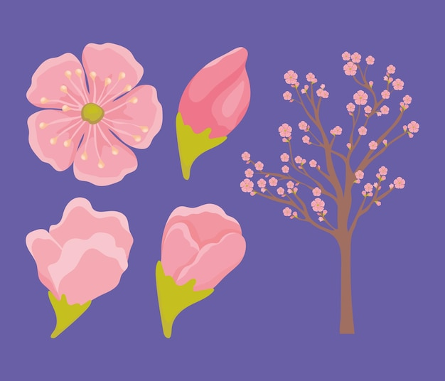 Bellissimi oggetti sakura