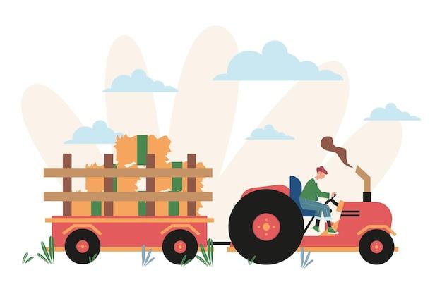 Processo di raccolta delle colture su un trattore, spighe con cereali integrali e foglie