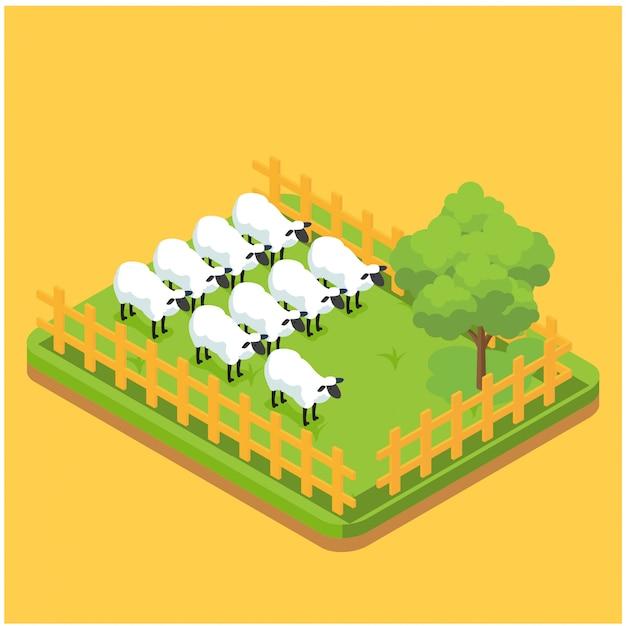Produzione di composizioni isometriche di materiale di lana con immagini di pecore che mangiano sull'erba nell'illustrazione vettoriale di pagina fattoria