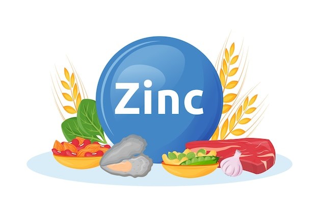 Prodotti ricchi di zinco cartoon illustrazione