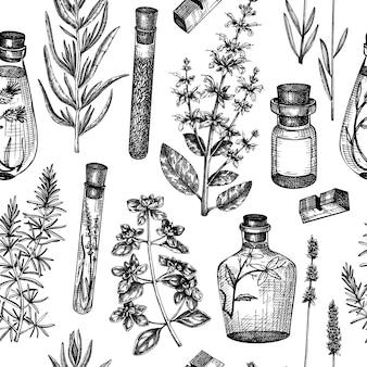 Sfondo di erbe provenzali in stile vintage disegno di piante aromatiche e medicinali abbozzato a mano