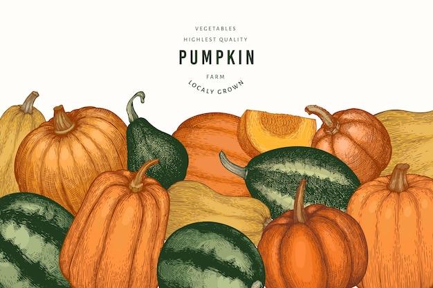 Illustrazioni disegnate a mano di colore della zucca. sfondo del ringraziamento in stile retrò con la raccolta della zucca. sfondo autunno.