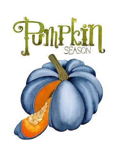 Illustrazione dell'acquerello di halloween di stagione della zucca