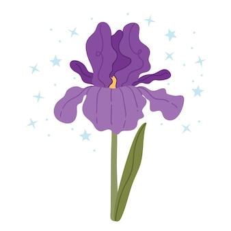 Iris viola su sfondo bianco illustrazione semplice.