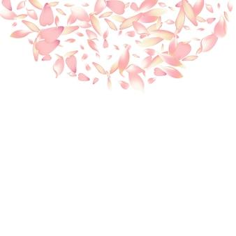 Fondo bianco di vettore del petalo della pesca viola. modello di petali di rosa morbido sakura. struttura del pavimento del petalo di rosa. sfondo congratulazioni petalo di loto.