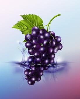 L'uva da tavola viola cade sulla spruzzata e sull'increspatura del succo