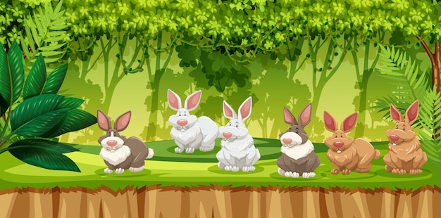 Coniglio nella scena della giungla