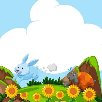 Coniglio e tartaruga in esecuzione sul campo