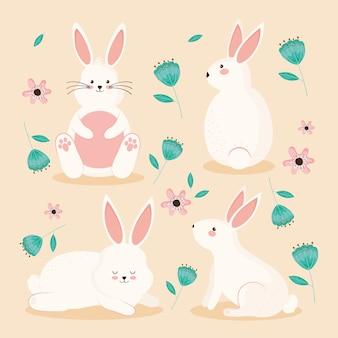 Conigli e fiori