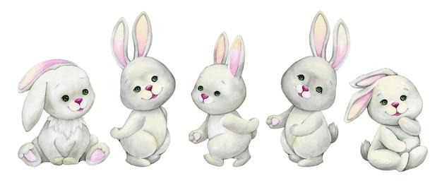 Conigli, seduta, acquerello animale, stile cartoon,