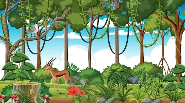 Foresta pluviale in scena diurna con diversi animali selvatici