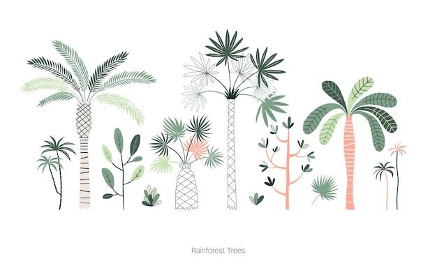 Insieme di illustrazioni disegnate a mano di alberi della foresta pluviale.
