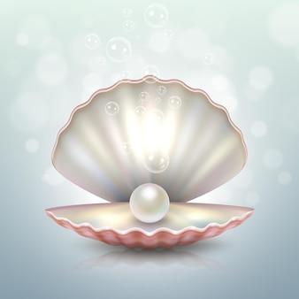 Primo piano realistico della conchiglia della perla del mare aperto naturale bella con modello di progettazione di riflessione