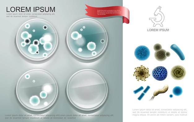 Composizione di microrganismi biologici realistici con cellule batteriche su piatti petro e diversi virus e illustrazione di germi