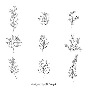Collezione di fiori botanici realistici Vettore Premium