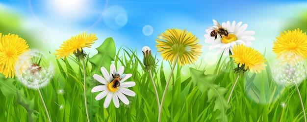 Composizione realistica di sfondo di denti di leone con macchie di luce solare del cielo ed erba naturale con api e fiori