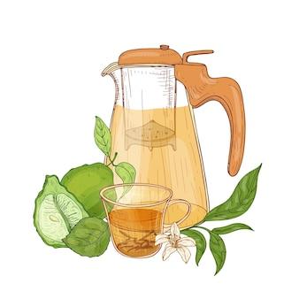 Disegno realistico di una brocca di vetro trasparente con colino, tazza di tè nero, frutta fresca di bergamotto, fiori e foglie isolate