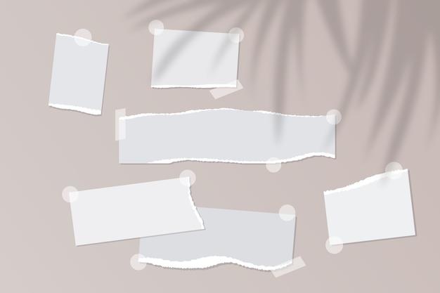 Note di carta strappata vuote realistiche con nastro adesivo su sfondo beige con sovrapposizione di foglie di palma
