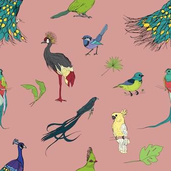 Modello senza cuciture variopinto disegnato a mano realistico con bellissimi uccelli tropicali esotici, foglie di palma. fenicotteri, cacatua, colibrì, tucano, pavone.