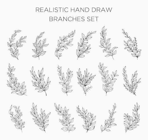 Fiori e foglie disegnati a mano realistici. nuovo grande set