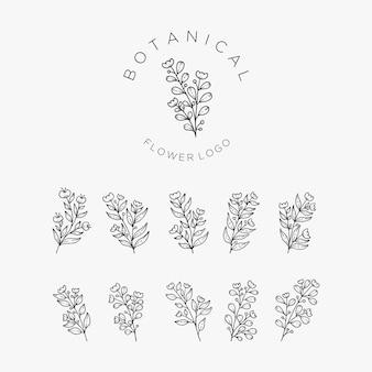 Fiori e foglie disegnati a mano realistici.