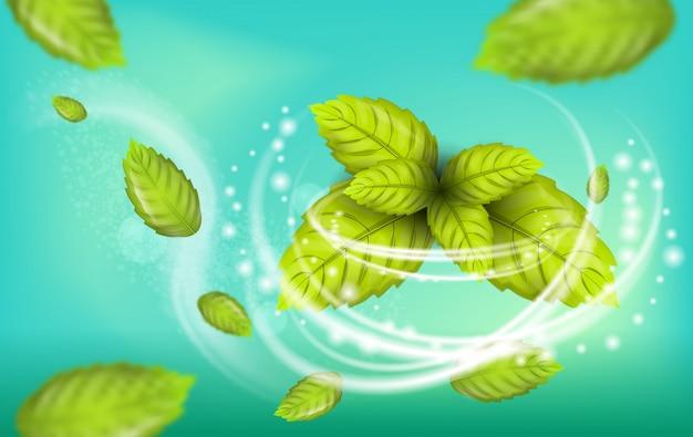 Illustrazione realistica flying mint leaf vector