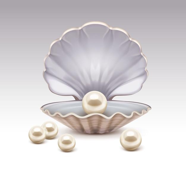 Illustrazione realistica della conchiglia aperta con perle beige madreperla all'interno e intorno isolato su sfondo grigio sfumato