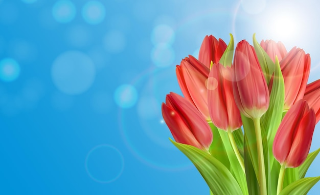 Fondo naturale realistico del fiore dei tulipani con il cielo.