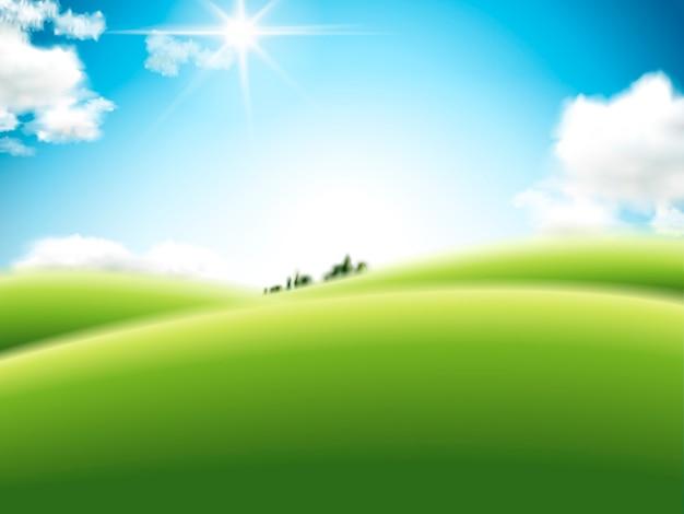 L'illustrazione realistica dei campi aperti può essere utilizzata come sfondo