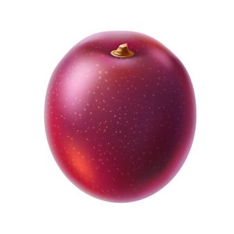 Frutta intera del frutto della passione realistico frutta esotica fresca