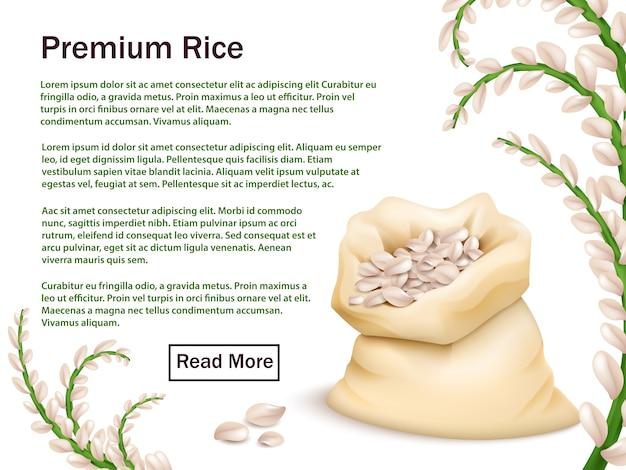Modello pubblicitario realistico di riso, cereali e orecchie