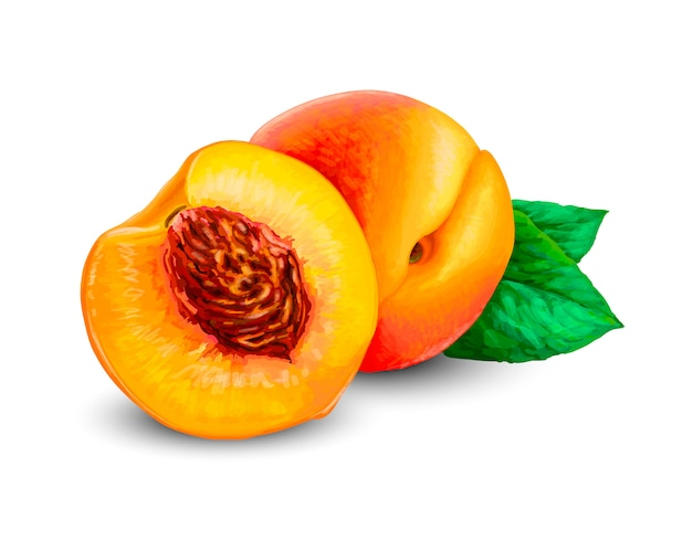 Pesche mature realistiche, intere e affettate. peach succosa frutta dolce 3d elevato dettaglio isolato su sfondo bianco. illustrazione realistica di vettore