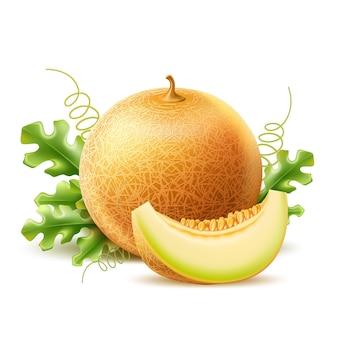 Melone rotondo realistico con fetta deliziosa frutta dolce vector cantalupo maturo