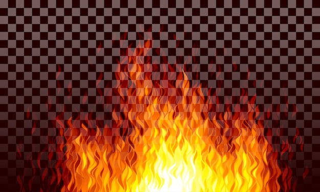 Fiamme di fuoco trasparenti realistiche su sfondo nero