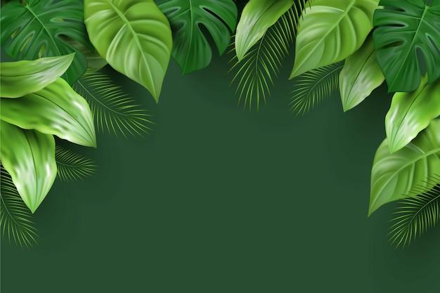 Sfondo di foglie tropicali realistico