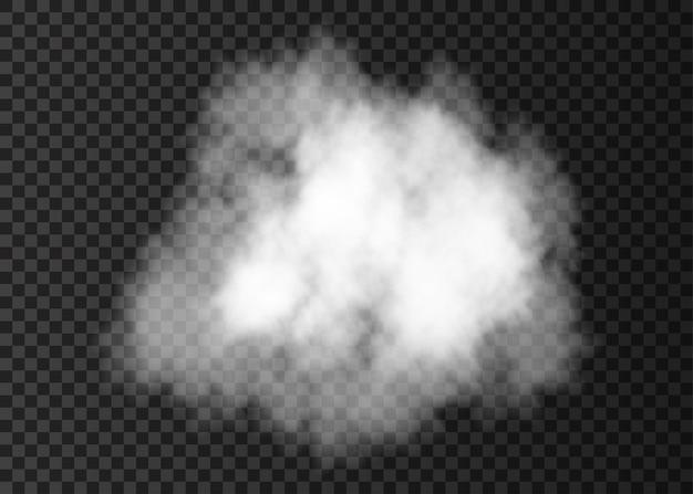 Nuvola di fumo bianca realistica. effetto speciale di esplosione di vapore. struttura della nebbia o della foschia del fuoco di vettore.
