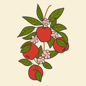 Ramo di mela rossa.