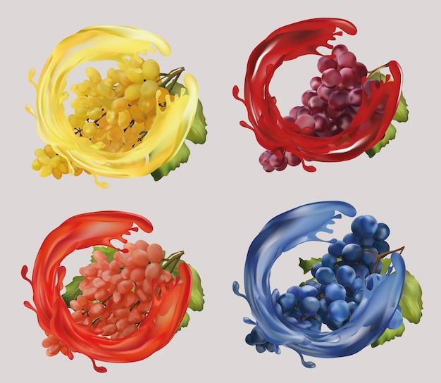 Uva rossa, rosa, bianca e blu. uva da vino, uva da tavola con succo di spruzzata. frutta realistica. illustrazione.