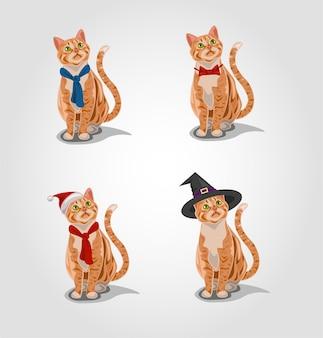 Gatto soriano rosso che indossa un set di costumi diversi