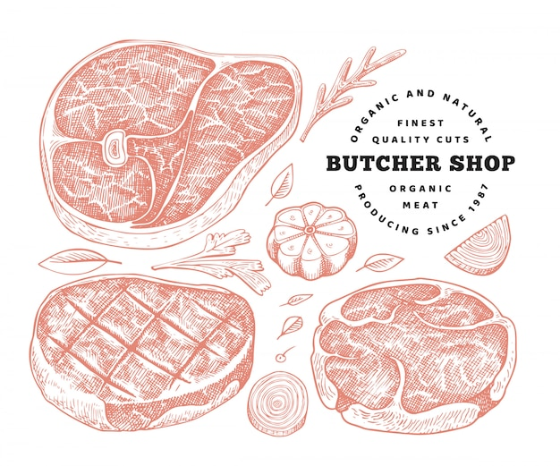 Illustrazione di carne vettoriale retrò. set di bistecca, spezie ed erbe disegnati a mano. ingredienti alimentari crudi. schizzo d'epoca