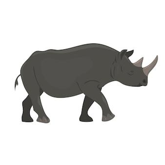 Rinoceronte isolato su sfondo bianco