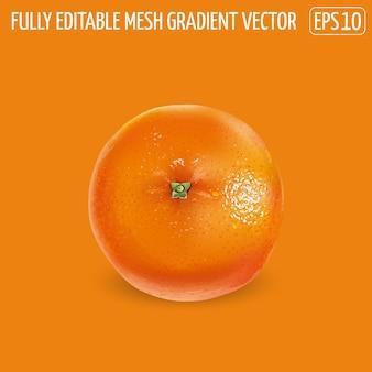 Arancia matura con la buccia su uno sfondo arancione.