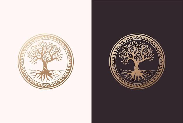Radice o albero, simbolo di vettore dell'albero della vita a forma di cerchio.