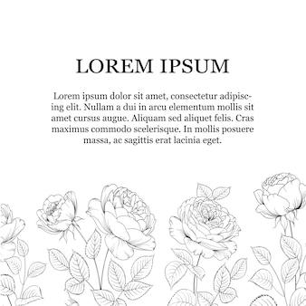 Il confine dei fiori di rosa con il posto del testo è isolato su fondo bianco.