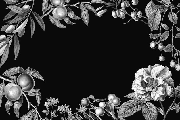 Cornice rosa vettoriale illustrazione botanica vintage e frutti su sfondo nero