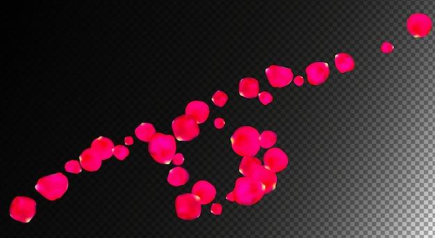 Petali di rose realistici in illustrazione vettoriale di sfondo trasparente