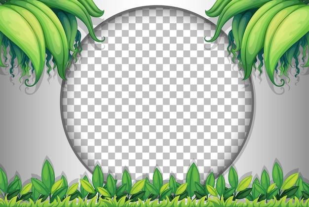 Cornice rotonda trasparente con modello di foglie tropicali
